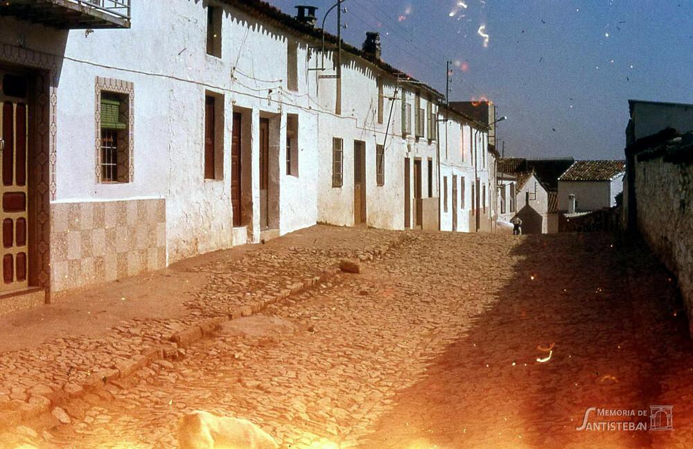 Calle Pollos
