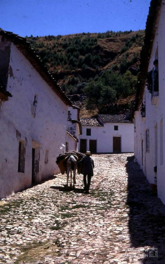 Calle Cantones